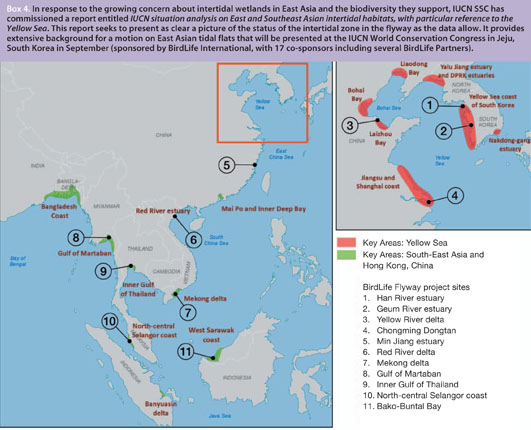 The candidate list of sites for BirdLife's new flyway project in Asia which is included to 16 key areas, identified by The IUCN Situation Analysis. © WorldBirdwatch - June 2012, BirdLife International.