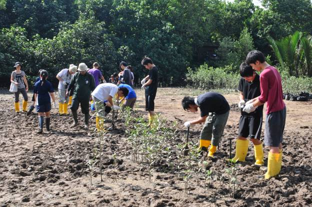 Students doing their part in conservation work at Sungei Buloh © Sungei Buloh Wetland Reserve