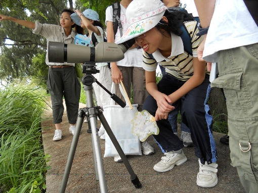 Children enjoying birdwatching inside Mai Po Nature Reserve © WWF-Hong Kong