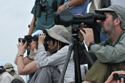 Paticipants watching shorebirds, seabirds and migratory/resident waterbird species on the boat © 2012 EAAFP