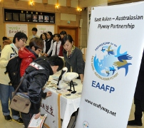 Students from Incheon schools inquiring about Black-faced Spoonbill's migration in the EAAF © EAAFP