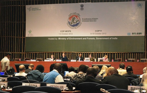 Eleventh Meeting of the Conference of the Parties to the Convention on Biological Diversity (COP 11) © EAAFP