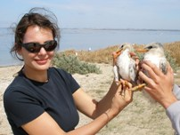 Dr. Judit Szabo with Greater Crested Tern chicks